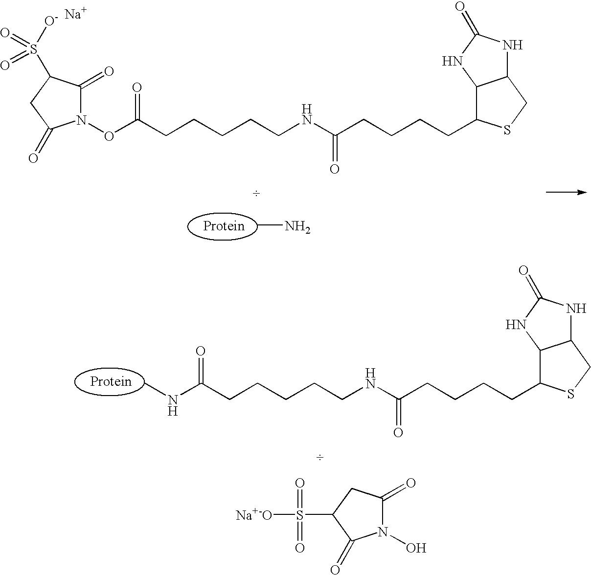 Figure US07094528-20060822-C00001