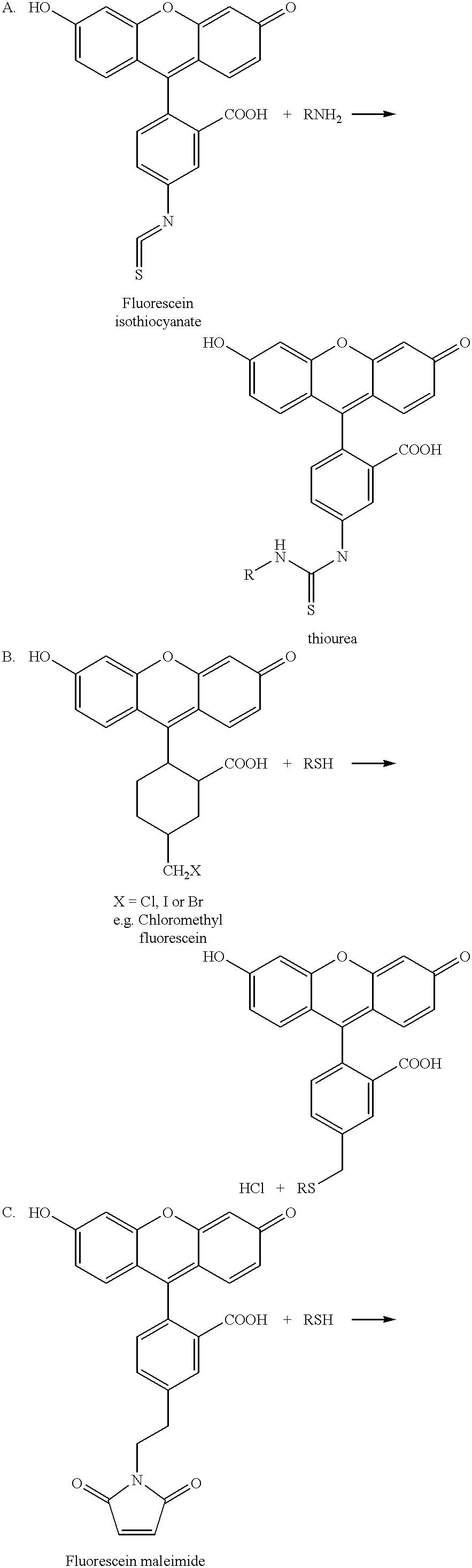 Figure US06579704-20030617-C00008