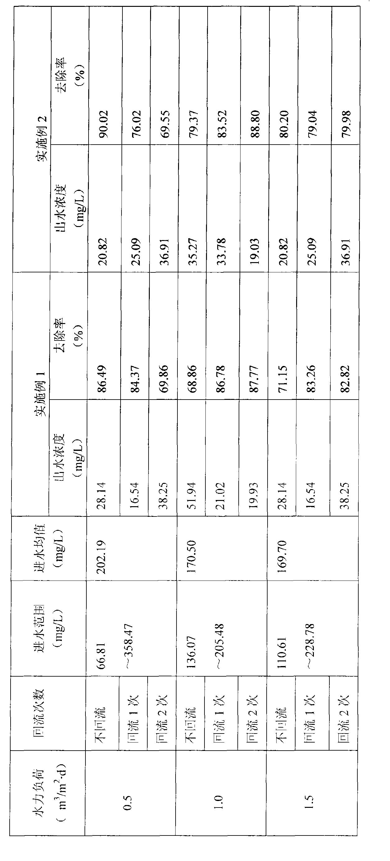 Figure CN101575157BD00101