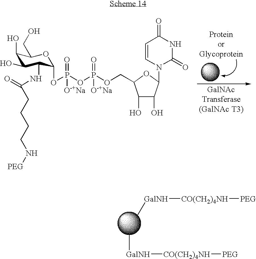 Figure US07173003-20070206-C00119
