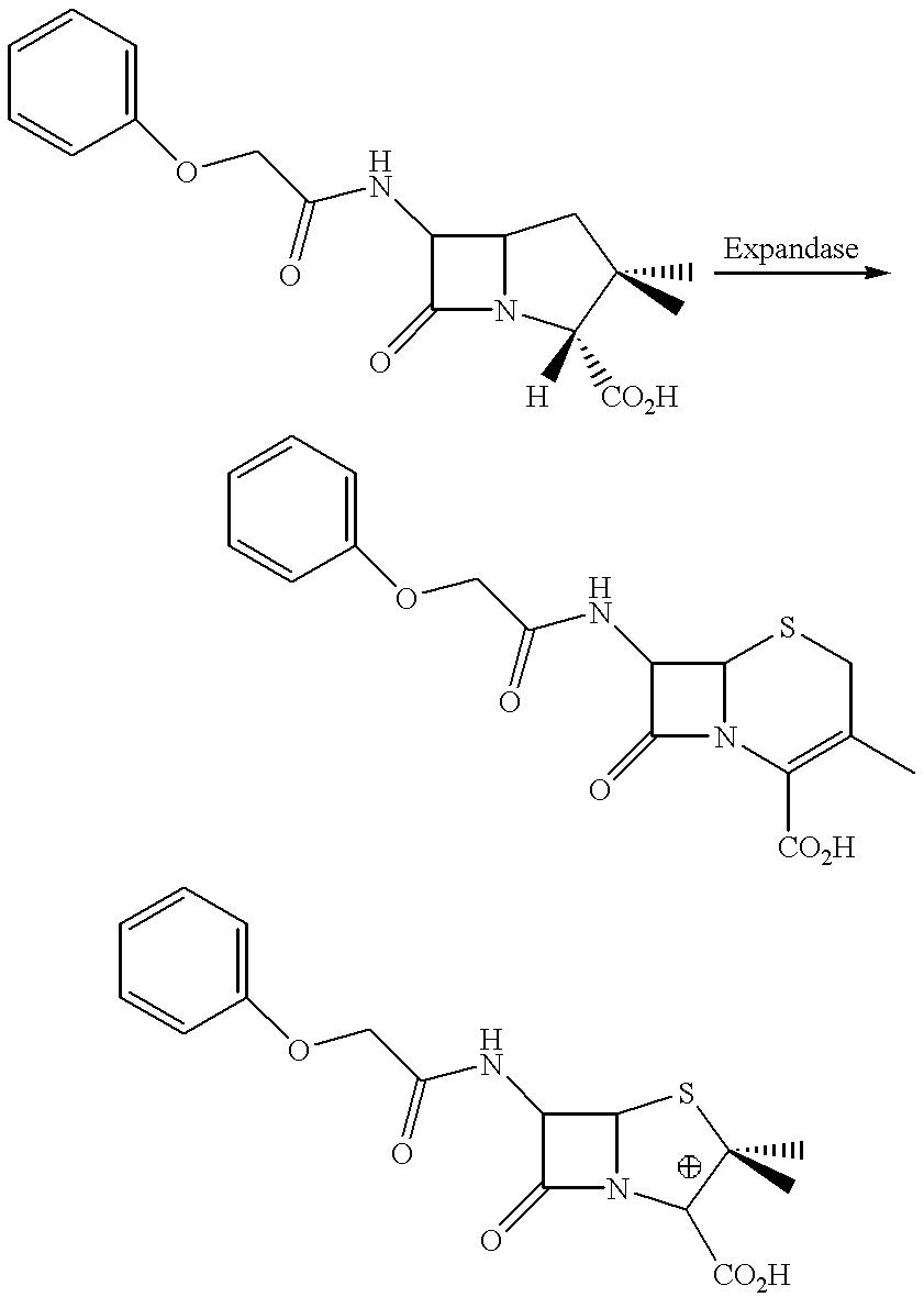 Figure US06335160-20020101-C00001