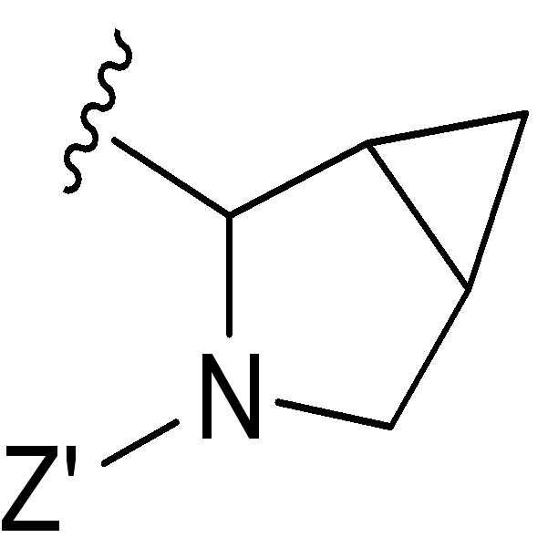 Figure pct00381
