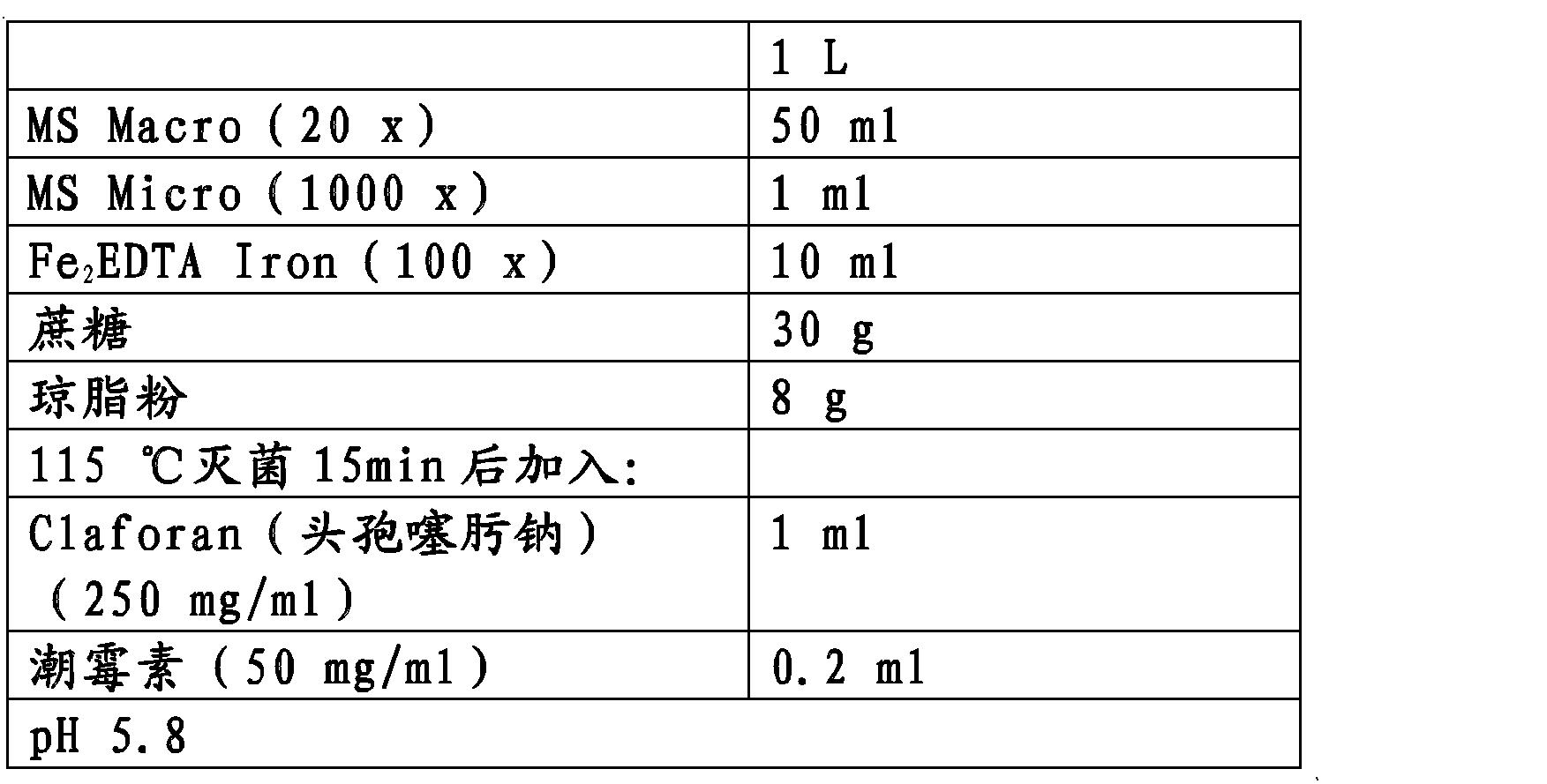 Figure CN102146392BD00212