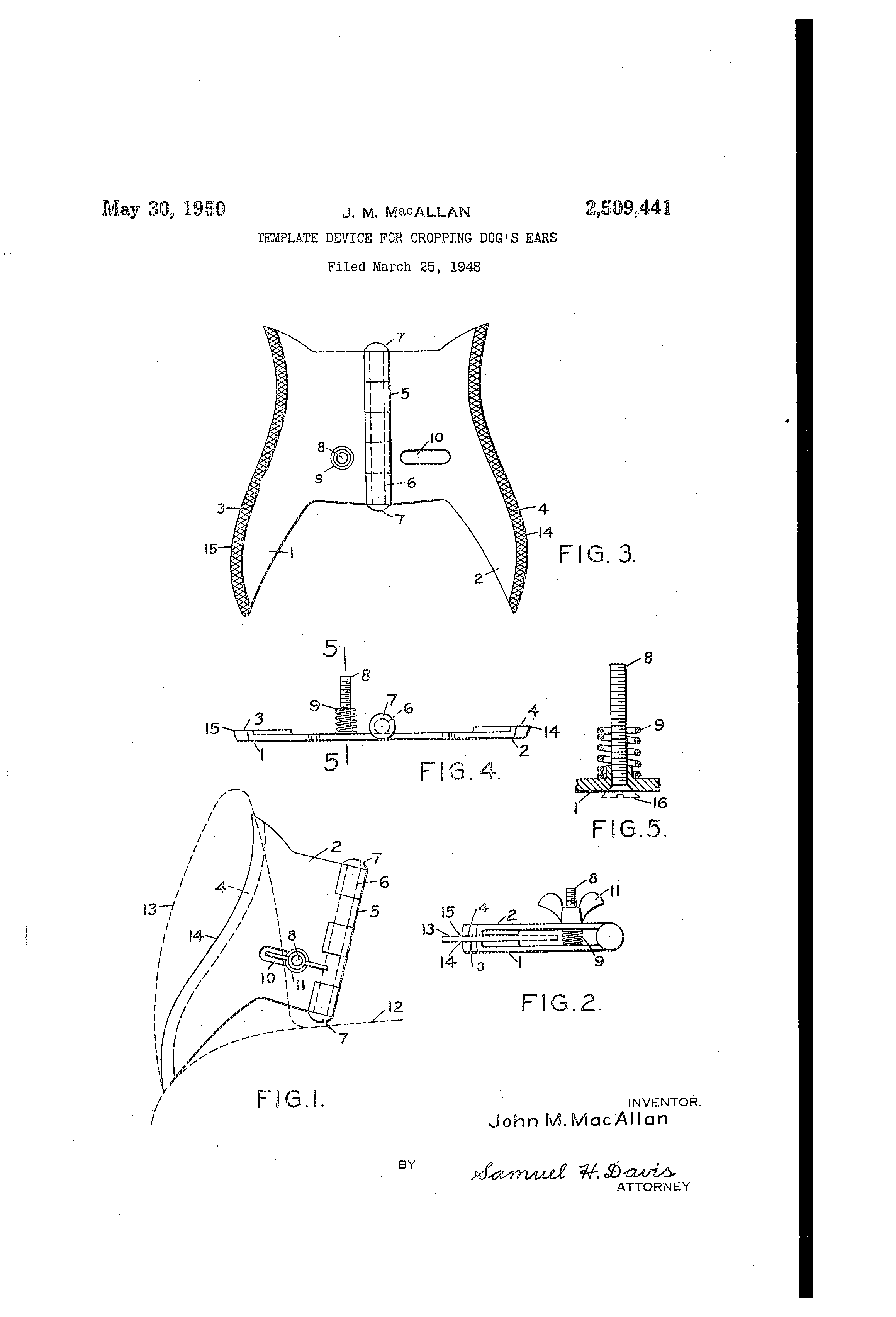 Patent US2509441 - Template device for cropping dog's ears ...