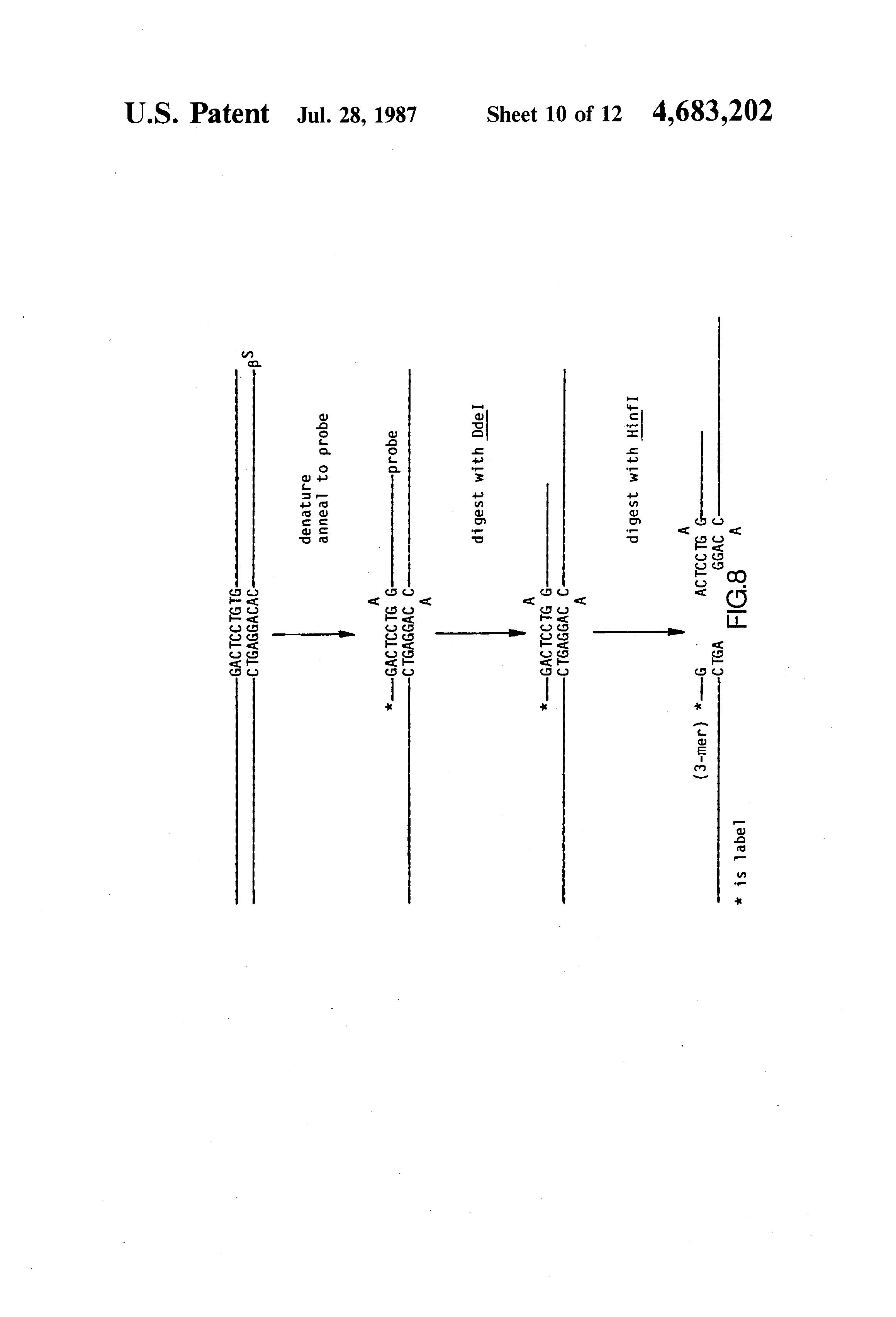 Us4683202a Process For Amplifying Nucleic Acid Sequences Google Analog And Mixed Signal Integrated Circuits Arun Ravindran Patents