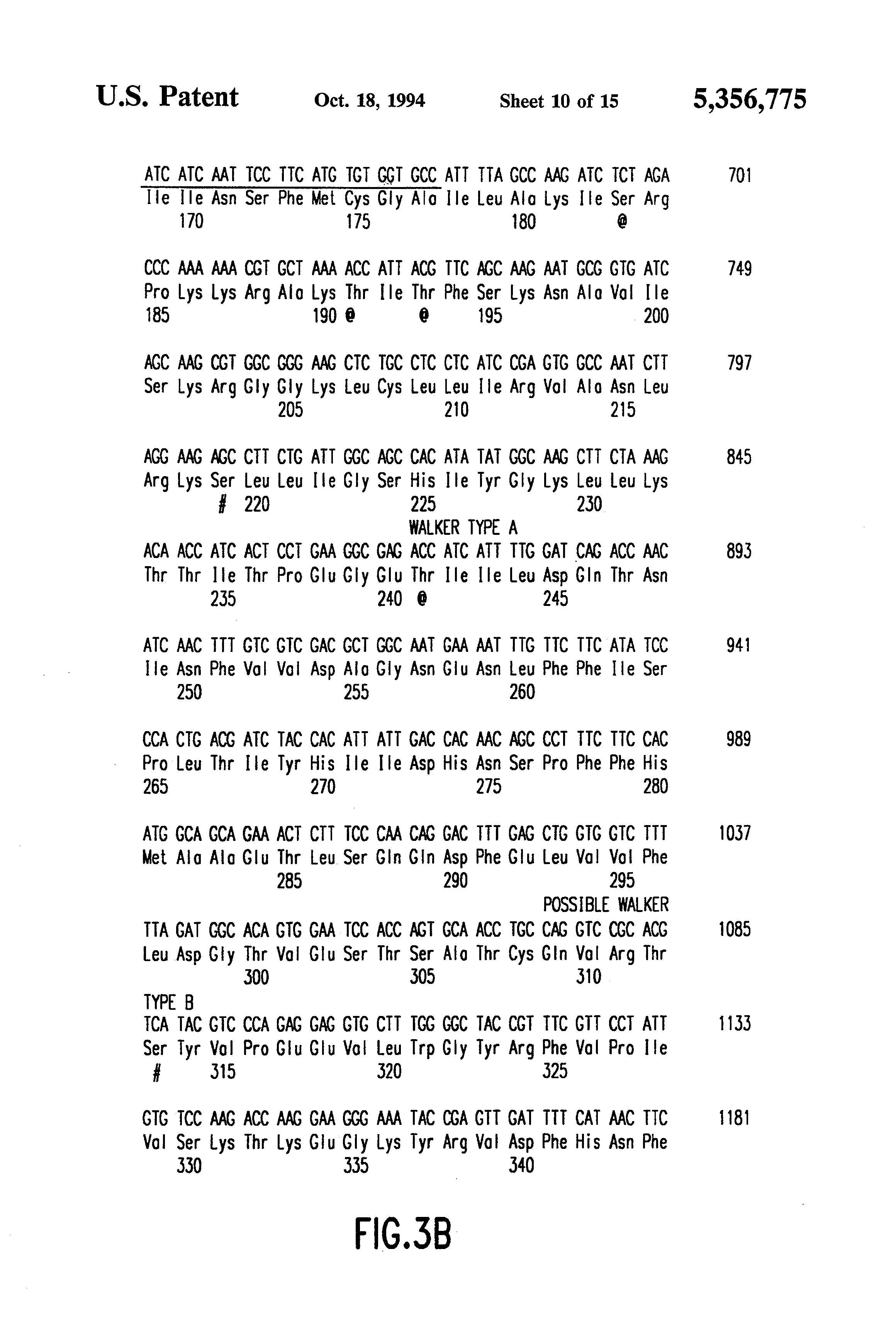 Patent Us5356775 Primary Structure For Functional Expression From Fascience Chapter 19 Bacteria Drawing