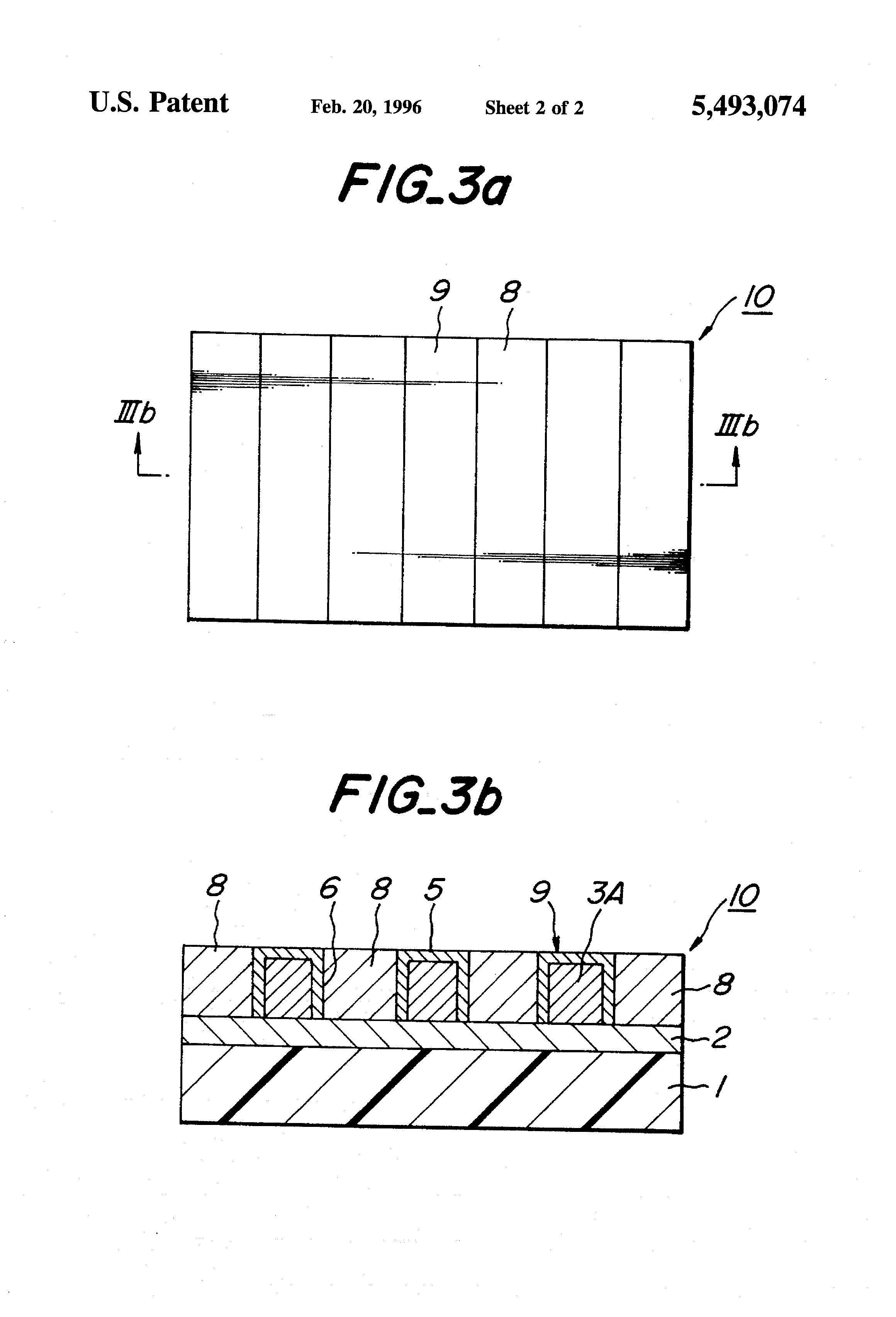 patent us5493074